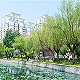 环城   天津西青区实现民心工程区镇街票决制全覆盖