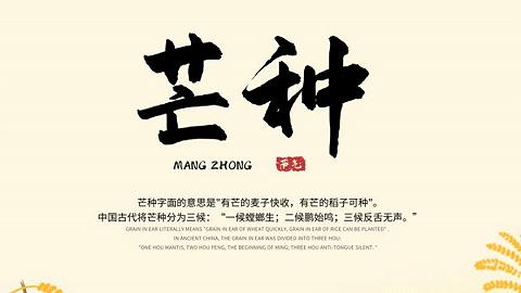 """6月5日12时58分""""芒种"""":麦黄梅熟仲夏至,""""三夏""""大忙迎高潮"""