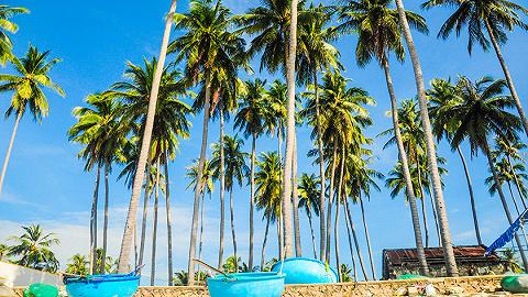 海口推出百款特惠旅游产品推动暑期热