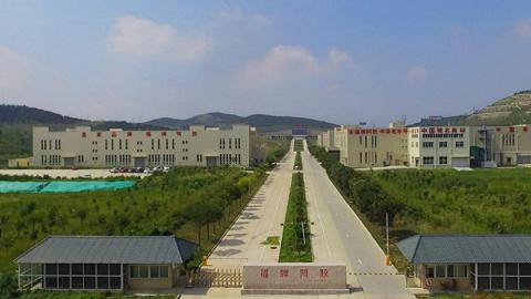 """全国劳动模范杨铧:引领""""阿胶新时代"""", 老字号迸发新生机"""