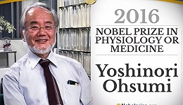 """""""日本人可能再也不会得诺贝尔奖了"""""""