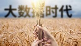 从田间到餐桌,5G、IoT、AI如何催生智慧农业?